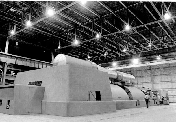Large steam turbine and generator